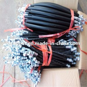 DOT Approved OEM Hydraulic SAE J1401 Brake Hose Assembly for Auto Parts pictures & photos
