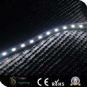 IP20 SMD5050 White Color LED Strip Light pictures & photos