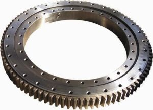 Single-Row Crossed Roller Slewing Bearing - External Gear pictures & photos
