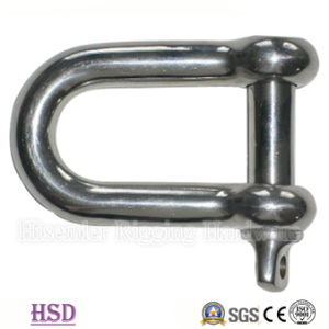 Stainless Steel Bow Shackle for Hardware Lifting pictures & photos