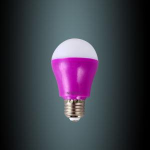 High Quality Colorful 5W LED Bub on Hot Sale (QQ-5W)