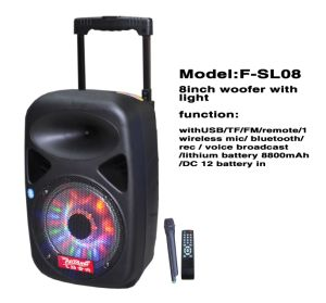 Professional Multimedia Speaker with Mic Input F85D pictures & photos