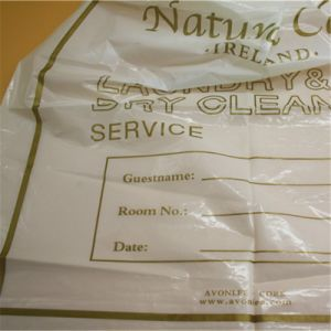 Hotel Laundry Bag (bag-007) Hotel Amenities Products OEM Slipper Bag pictures & photos