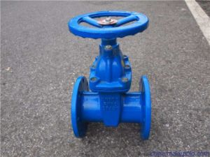 Resilient-Seated Non-Rising Stem Soft-Sealing Gate Valve with Flange End pictures & photos