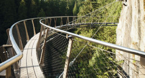 Stainless Steel Suspension Bridge Railing Mesh/Stainless Steel Wire Rope Netting/Mesh pictures & photos