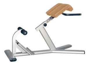 Professional Roman Chair (AF7826)