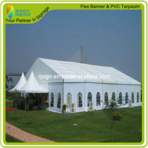 Factory Price Coated PVC Tarpaulin for Truck Cover/Tent (RJCT003) pictures & photos