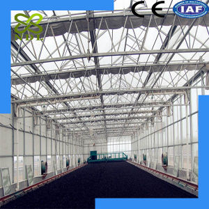 Factory Direct Sales PC Board Greenhouse pictures & photos
