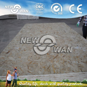 12mm Building Material OSB (NOSB-0048) pictures & photos