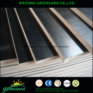 18mm Two Time Hot Press Quality Fillm Faced Plywood with Brown Film and Hardwood Core pictures & photos