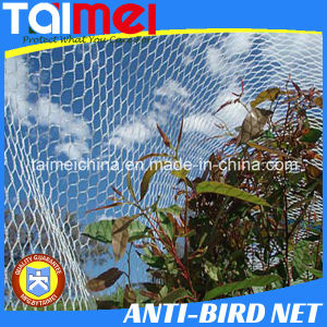 60~350GSM HDPE Knitted Green/Beige/Other Color Anti Bird Net pictures & photos