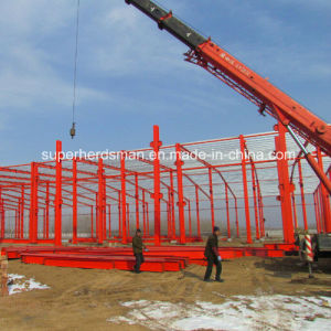 Modern Prefab Steel Frame Poultry Building House pictures & photos