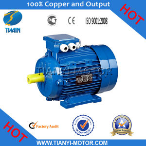 Y2 Cast Iron Three Phase Motor (Y2-631-2) pictures & photos
