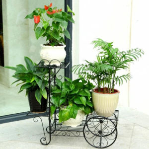 Hot Sale 3 Tier Wrought Iron Bicycle Flower Stand pictures & photos