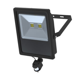 IP65 Waterproof Outdoor 50W LED Flood Light with Ce RoHS pictures & photos