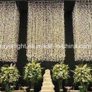 LED Fairy Light Home Decor LED String Light Curtain pictures & photos