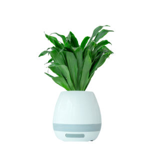 Desktop Air Freshener Bluetooth Speaker with Negative Ions pictures & photos