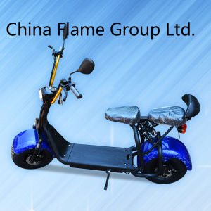 18 Inch Big Tire City Scooter with 1000W Brushless Motor pictures & photos