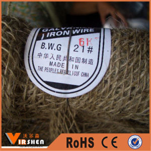 China Black Annealed Binding Wire pictures & photos