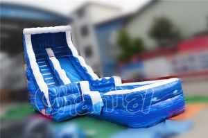 Sea World Inflatable Slide Water Slide for Amusement Park (CHSL511-1) pictures & photos
