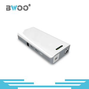 Newest Model Big Capacity Portable Powerbank with LED Lighting pictures & photos
