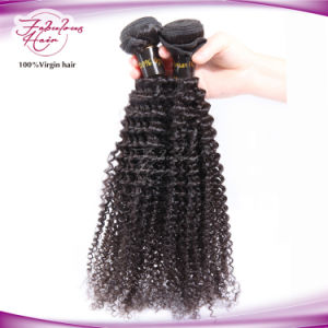 Full Cuticle Unprocessed Brazilian Hair Kinky Curly 100% Human Hair pictures & photos