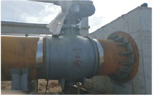 WCB Top Entry Type Double Eccentric Half Ball Valve for Water Treatment pictures & photos