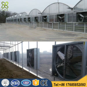 Greenhouse Fans Cooling for Sale with Ce Certification pictures & photos