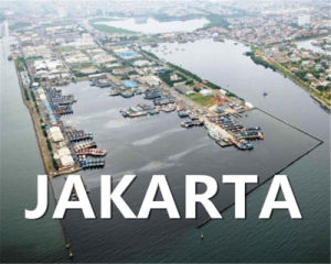 Maersk Sea Freight From Qingdao to Jakarta pictures & photos