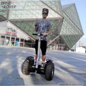 Golf Scooter Wind Rover V5+ off Road 2 Wheel Electric Scooter pictures & photos