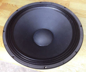 18g100t PRO Sound Speaker Subwoofer pictures & photos