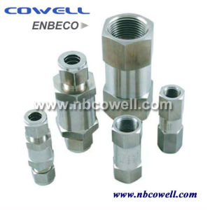1 /2 Inch Brass Hydraulic Check Valve pictures & photos