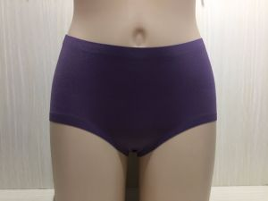 Anti-Bacterial Silver Fiber Nylon Underwears for Women pictures & photos