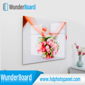 Wall Photo Panel HD Aluminum High Quality pictures & photos