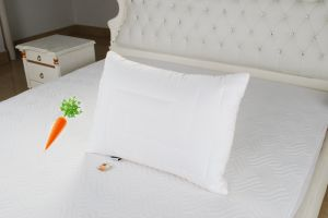 New Beta-Carotene Pillow Made in China pictures & photos