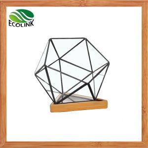 Glass & Bamboo Geometric Succulent Plant Pot pictures & photos