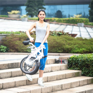 High Quality 16 20 Inch Folding Bikes Shaft Drive Bike Chainless Folding Bike Made in China pictures & photos