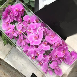 Professional Manufacturer Rectangular Acrylic Rose Box Luxury for Sale pictures & photos
