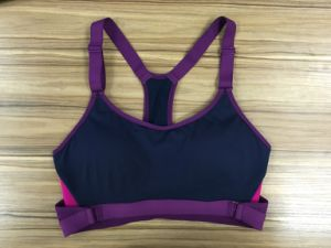 1012-1style, Underwear, Bra, Sport Wear, Purple Color, Good Quality pictures & photos