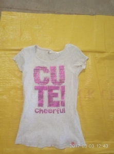 Wholesale Baled Sorted Ladies Short Sleeve T-Shirt for California Style pictures & photos