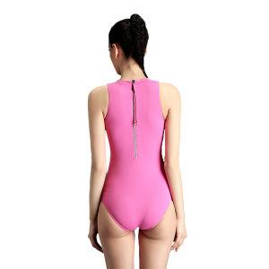 Women Nylon Spandex Plus Size High Waisted Bikini Swimsuit pictures & photos