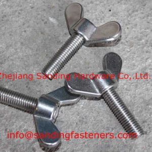 Stainless Steel DIN316 Wing Bolt pictures & photos