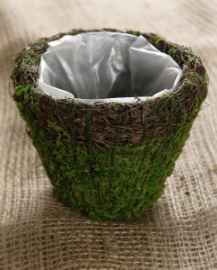 Wicker and Moss Planter 5in pictures & photos