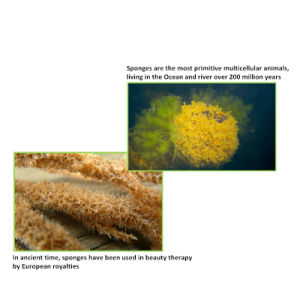 Cosmetic Raw Material Spongilla Spicules (max 150um) for Skin Peeling Cream pictures & photos