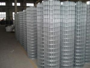 Welded Mesh Used in Protection and Construction pictures & photos