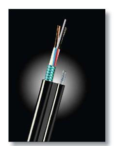 Optical Fiber Cable (GYTC8S)