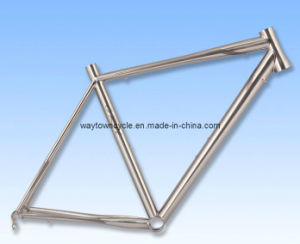 Bike Frame (WT-RA201) pictures & photos
