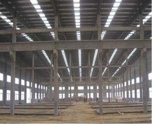 Color Steel Structure House (FAX-680014-MA)