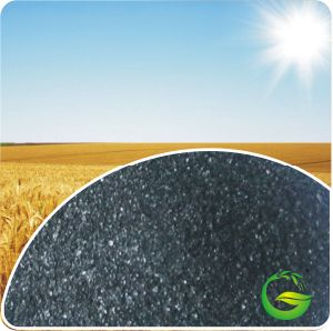 Humic Acid Potassium Humate Powder pictures & photos