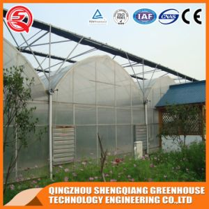 Commercial Graden Polyethylene Plastic Film Green House pictures & photos
